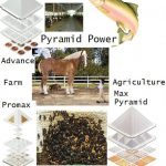 Farms and Agriculture uses of Pyramids